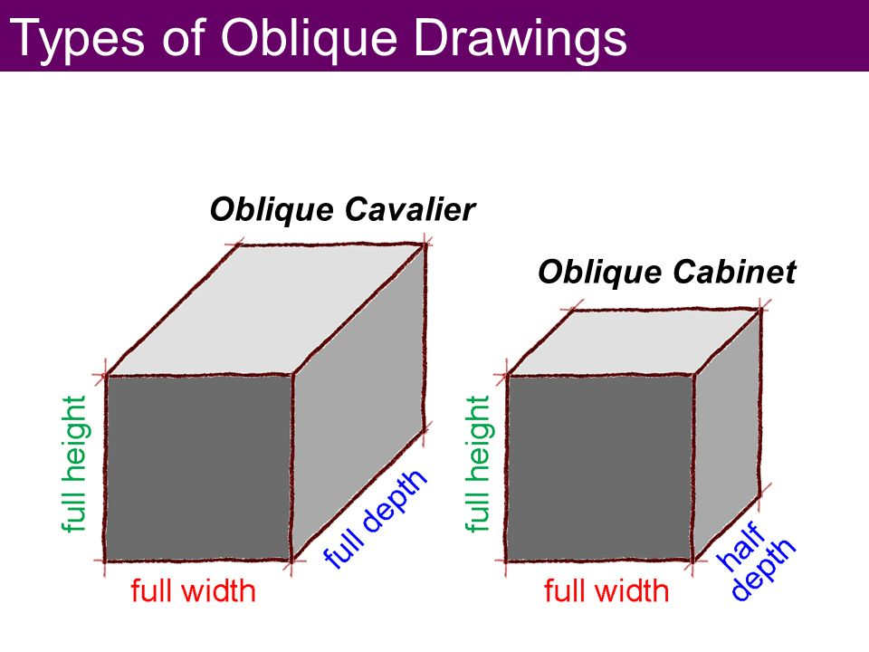 clipart royalty free library Cavalier Oblique Drawing at PaintingValley
