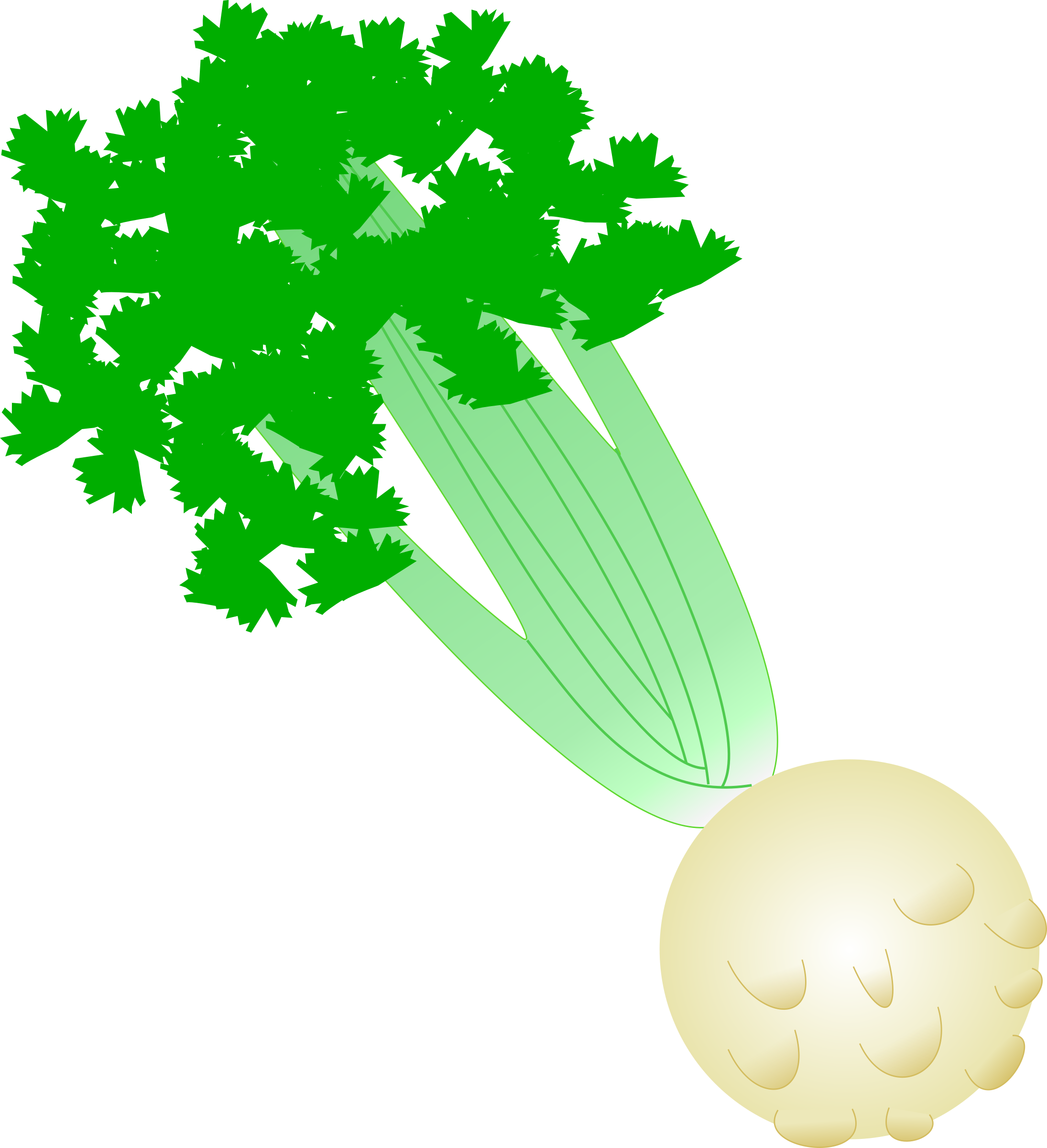 image stock With root big image. Celery clipart.