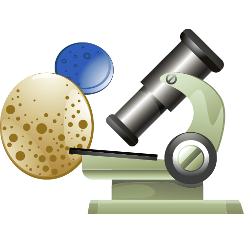 clip art download Cells clipart microscopic. Science microscope experiment test.