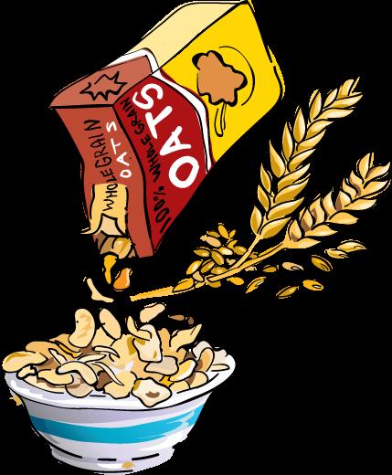 vector transparent Whole grain breakfast cereal. Grains clipart cerial