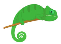 png library Reptiles clip art pictures. Chameleon clipart