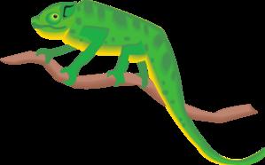 jpg stock On a branch clip. Chameleon clipart