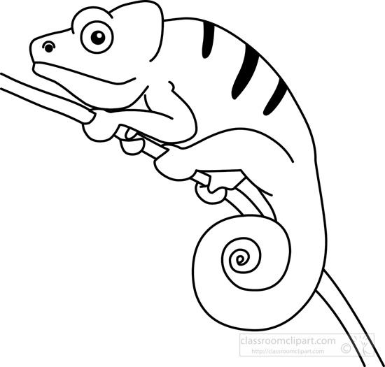 jpg transparent stock Transparent . Chameleon clipart drawing.