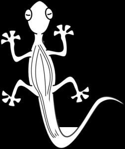 png transparent stock Gecko clipart lizerd. Lizard outline clip art.