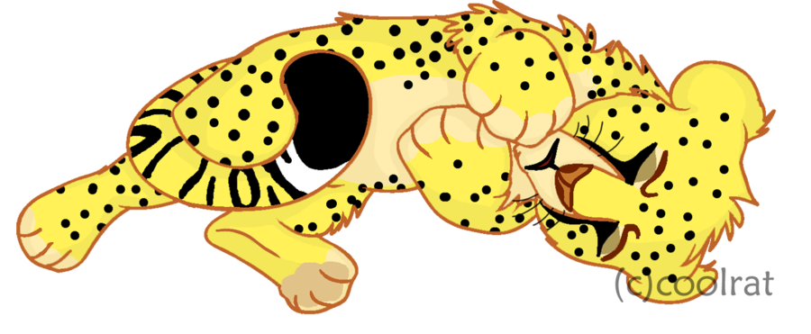 graphic royalty free library D by coolrat on. Cheetah clipart cheetah cub.