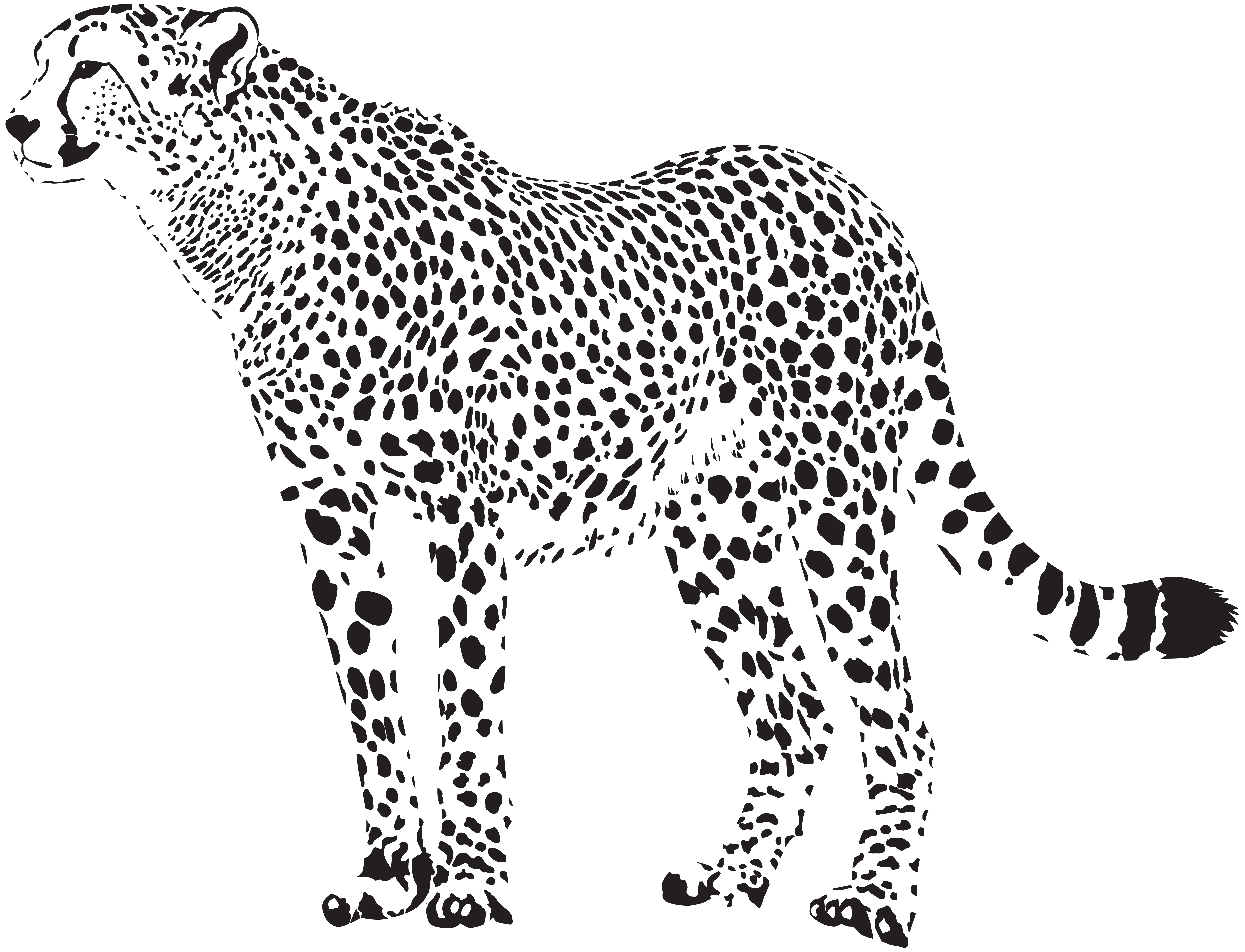 graphic freeuse Cheetah clipart face. Silhouette png transparent clip.