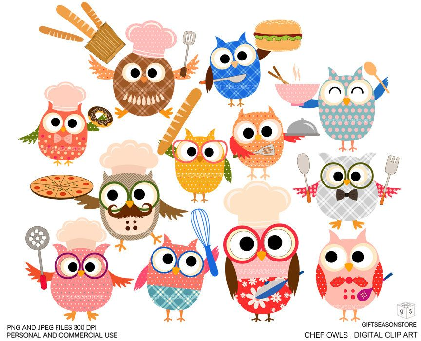 png transparent download Chef owls digital clip. Chefs clipart owl.
