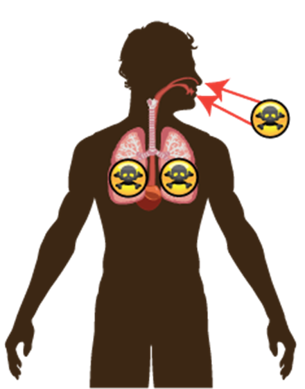 jpg freeuse library Toxtutor factors influencing toxicity. Disease clipart toxic chemical.