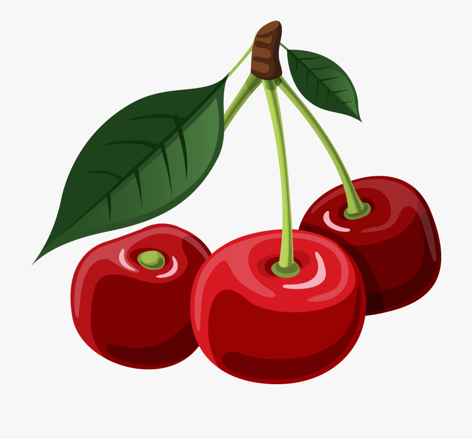 vector stock Cherry clipart. Png transparent cartoon free.