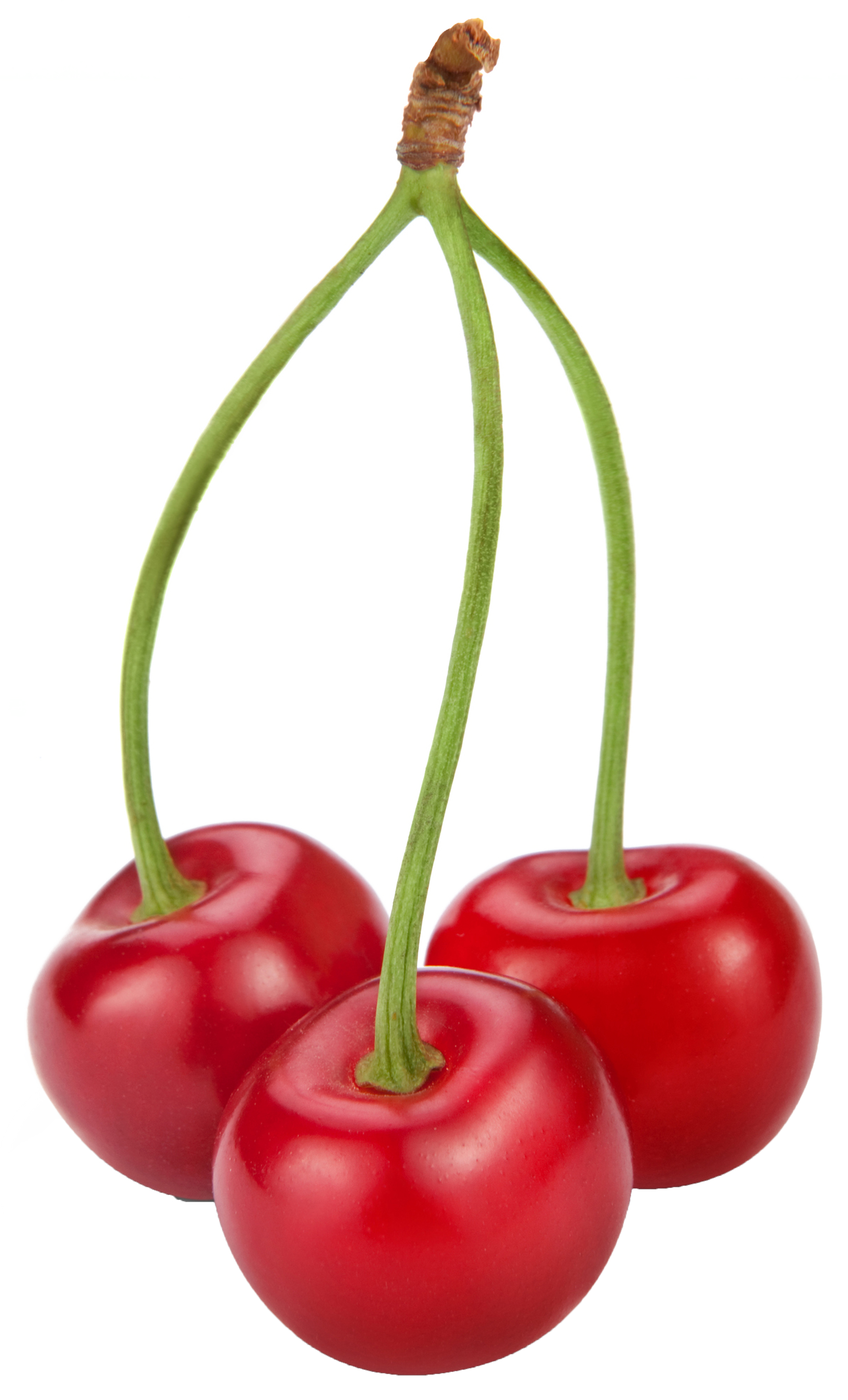 graphic royalty free Cherries clipart. Png gallery yopriceville high