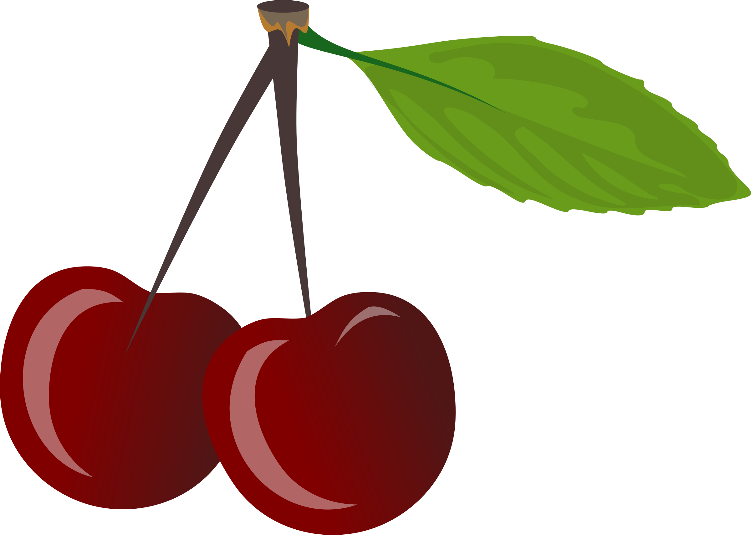 vector transparent stock Cherries big image png. Cherry clipart small food.