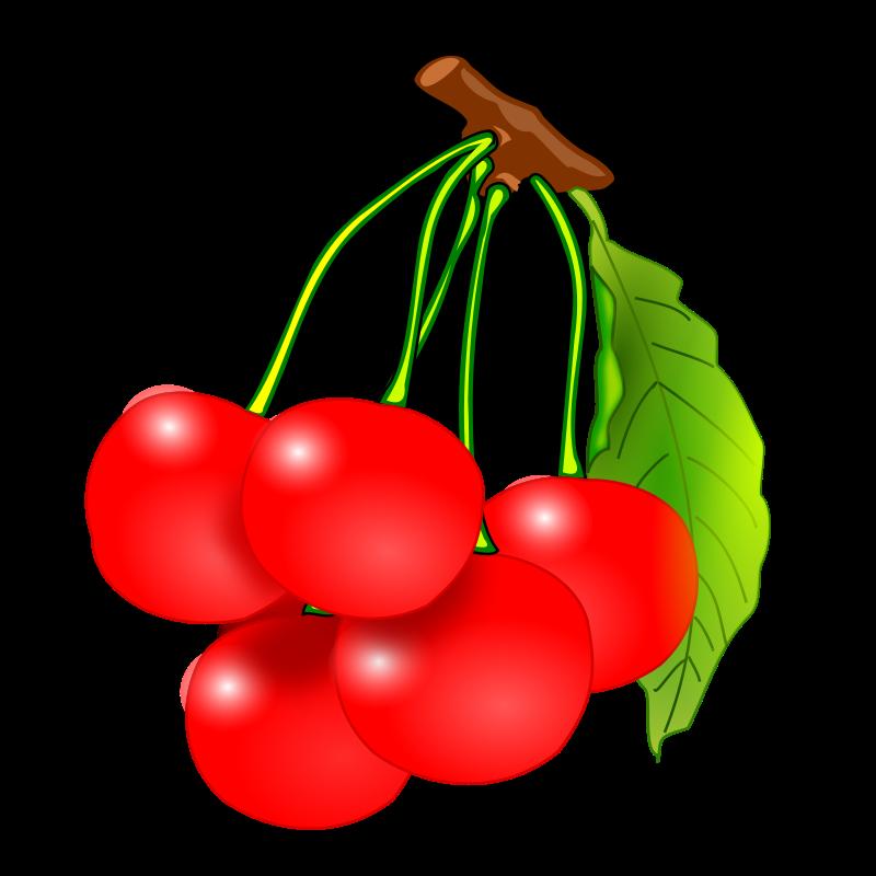 clip art freeuse stock Free pinterest clip art. Cherries clipart.