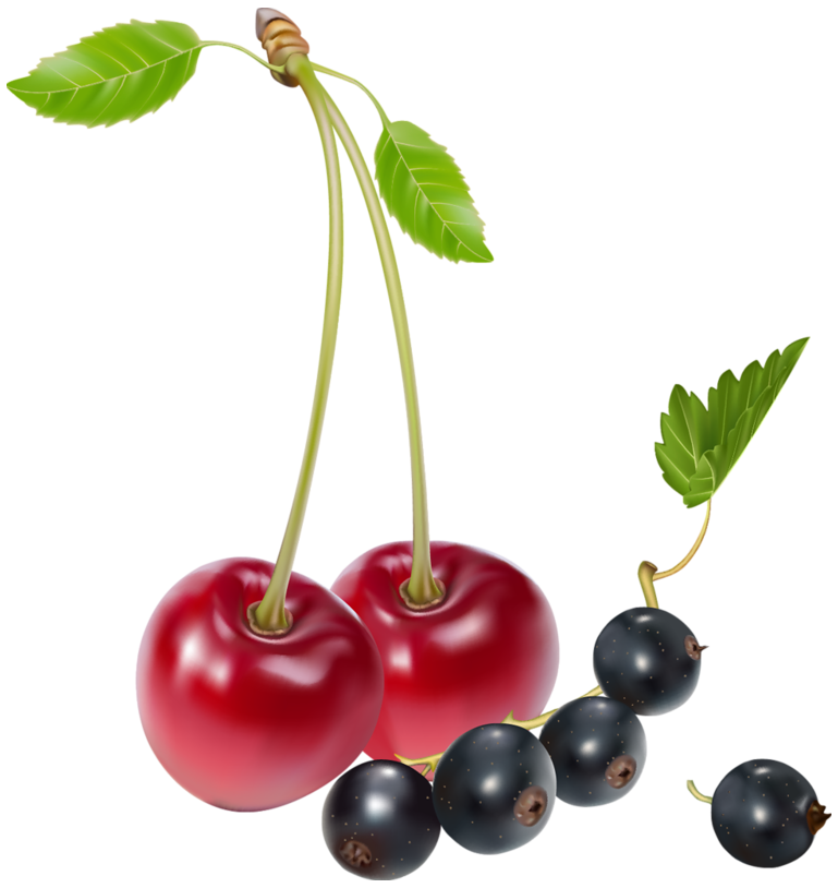 svg transparent library And blueberries png best. Cherries clipart blueberry.