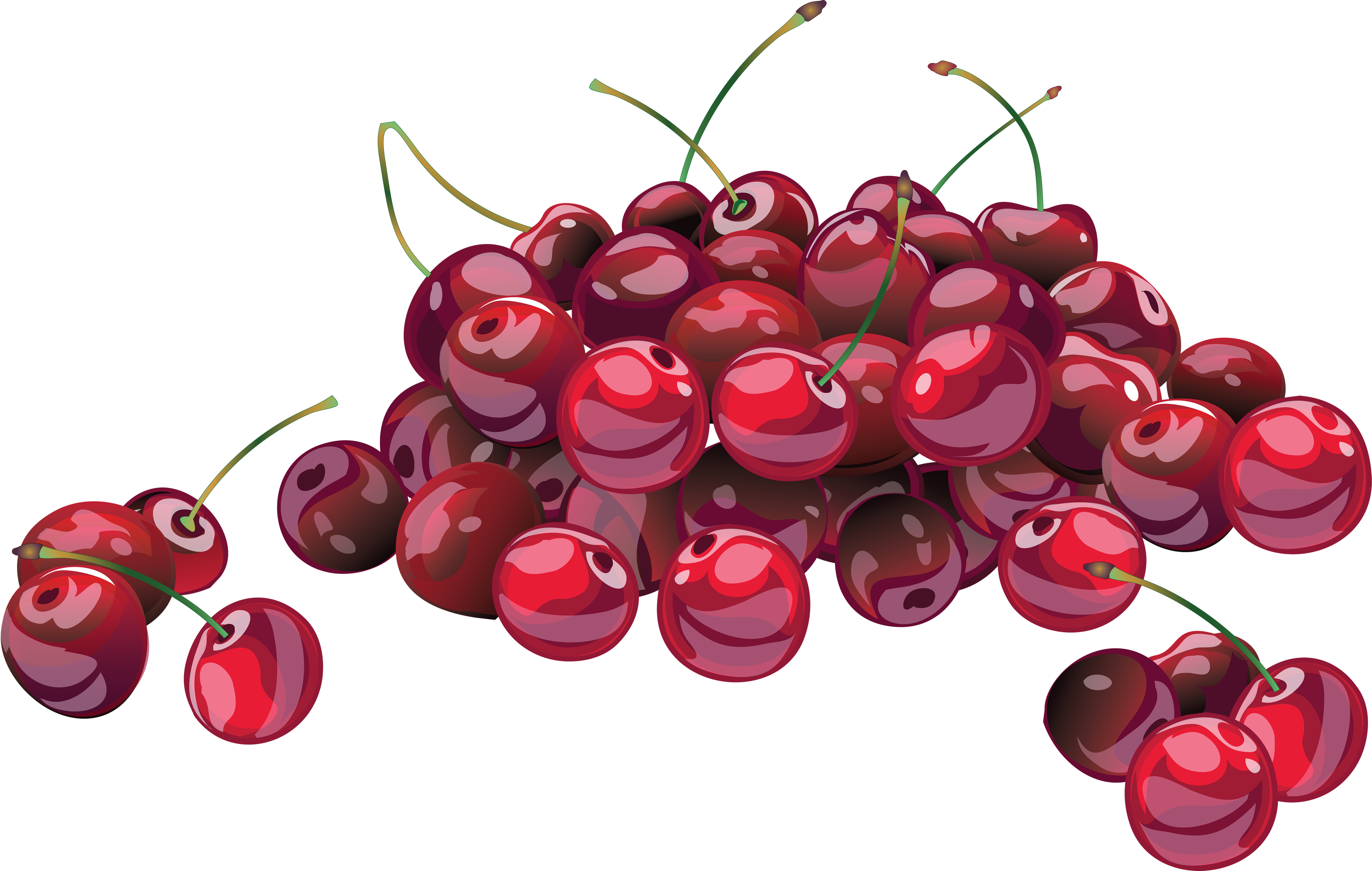 royalty free stock Cherries clipart four. Cherry forty isolated stock.