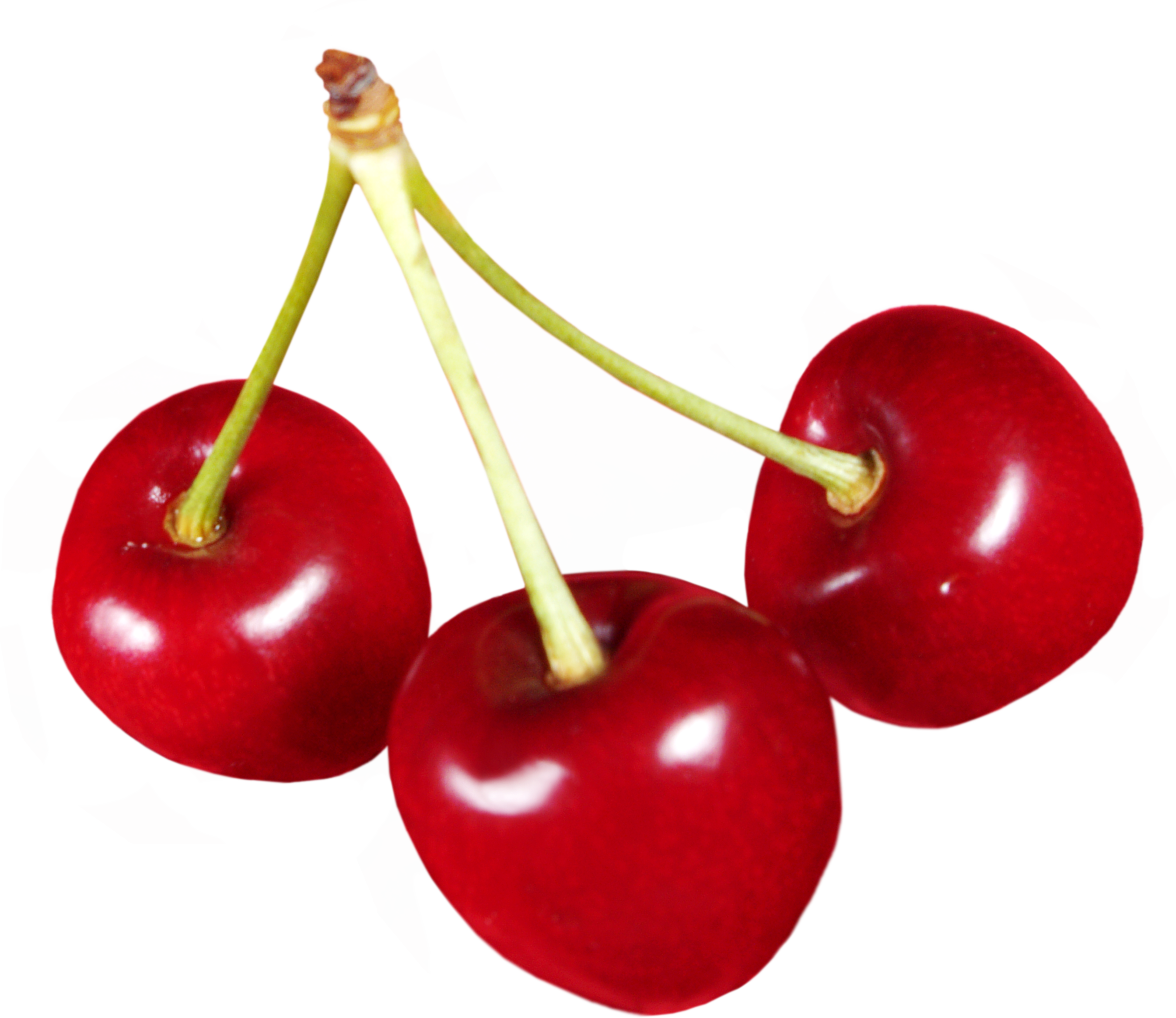 graphic free stock Hq cherry png transparent. Cherries clipart four.