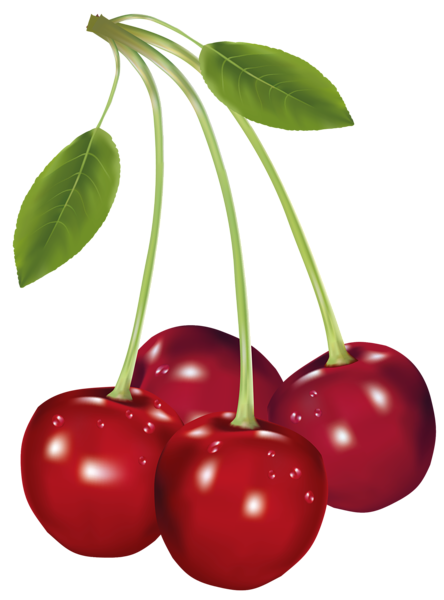 jpg black and white library Cherry clipart sweet fruit. Cherries png picture imprimibles.