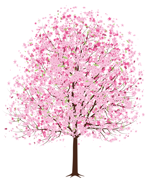 clip transparent cherry tree clipart #60821542