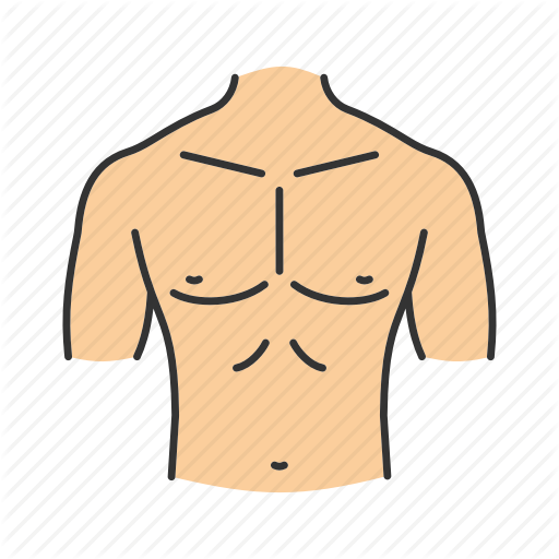 jpg free stock Chest clipart male chest.  body parts filled.