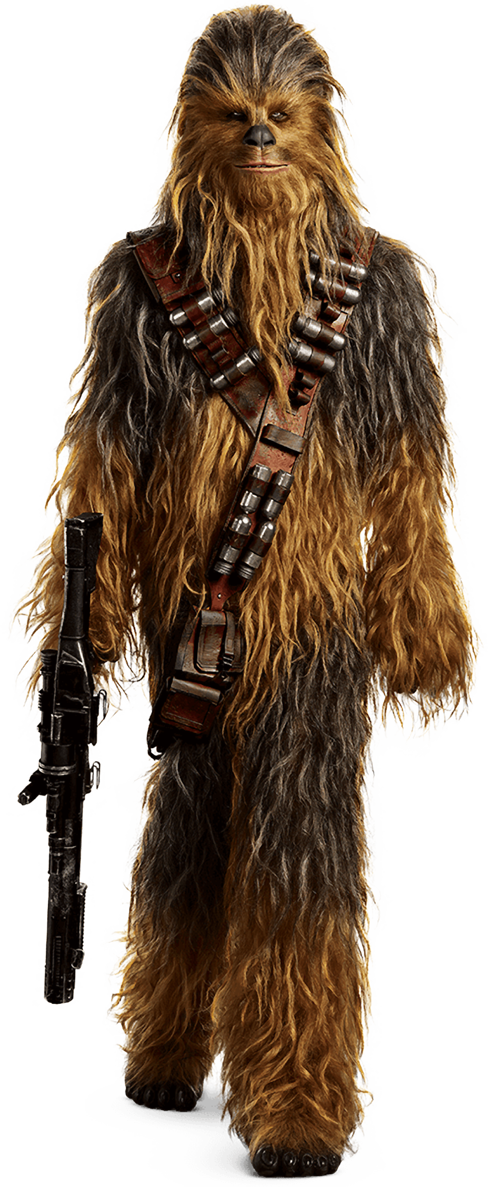 clipart black and white download Characters of solo a. Chewbacca transparent