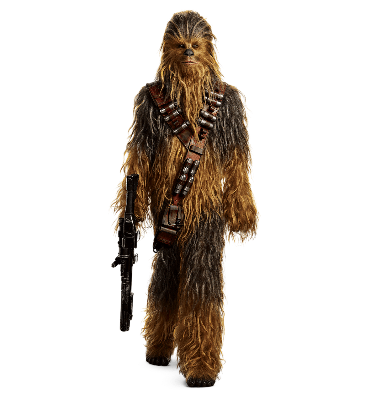 freeuse Chewie solo a star. Chewbacca transparent background