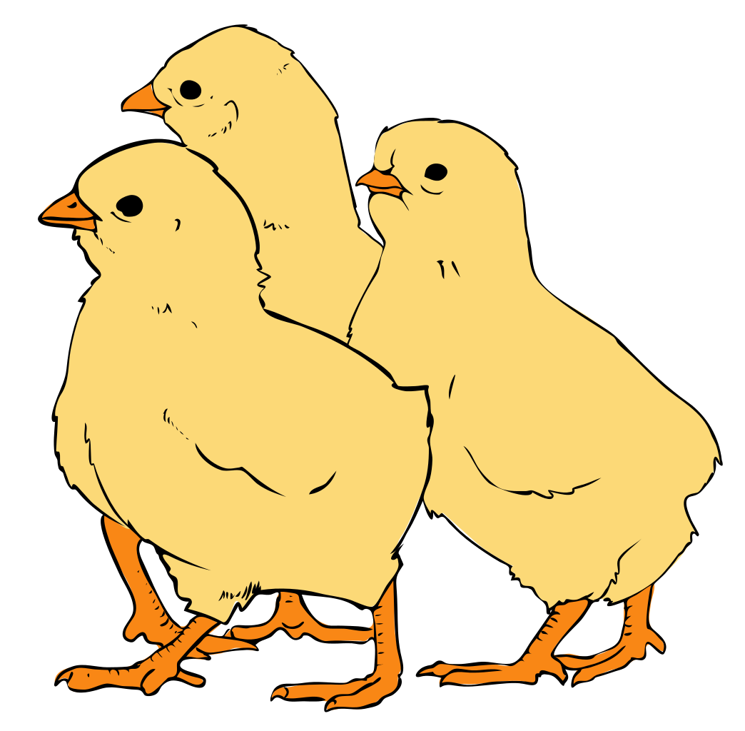 clip art transparent stock File chicks svg wikipedia. Chick clipart.