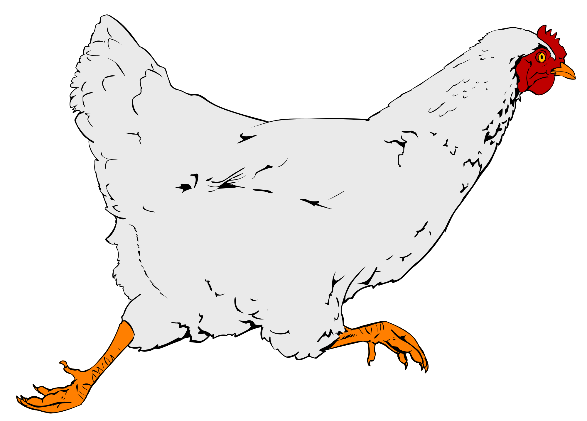 banner library stock Chicken clipart. File svg wikimedia commons