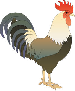 svg royalty free library Chicken clipart rooster. Clip art at clker