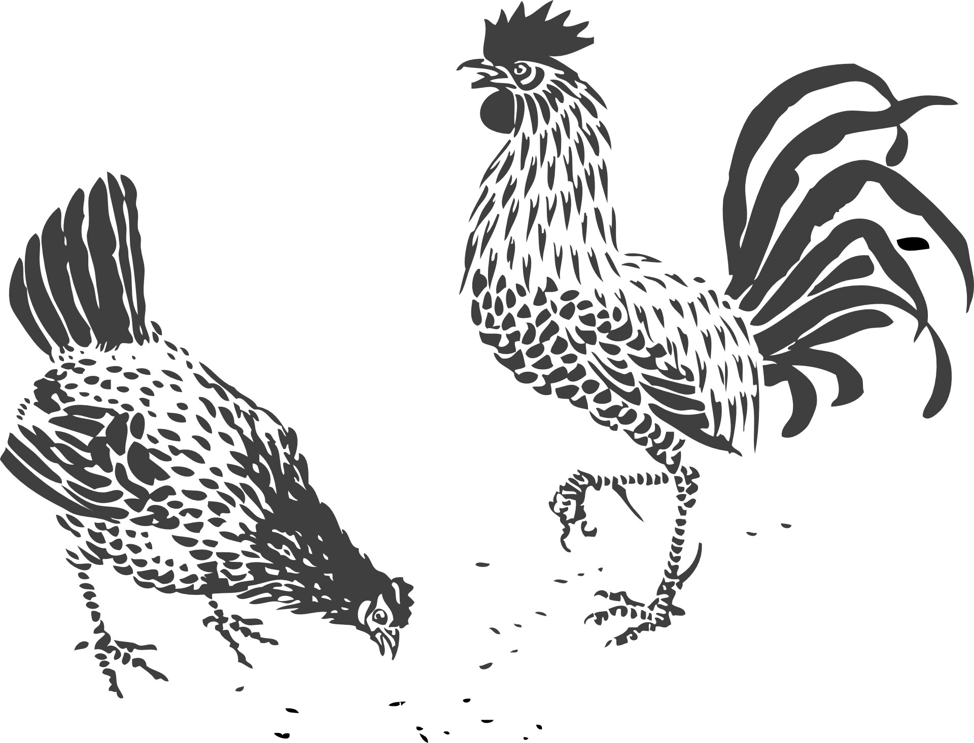 jpg black and white stock Chicken drawing rooster clip. Chickens clipart line art.