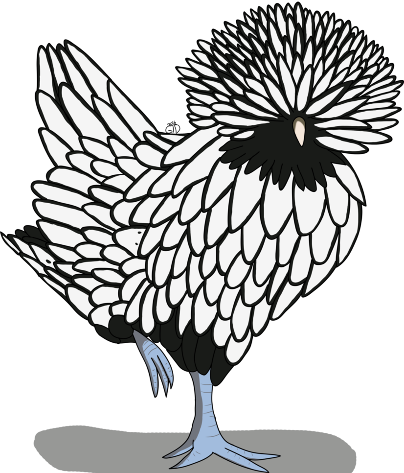 vector Chicken drawing at getdrawings. Chickens clipart line art.