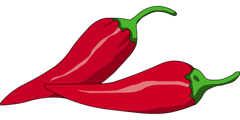 jpg freeuse library Peppers drawing realistic. Chili clipart cup free