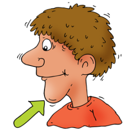 banner royalty free library Chin clipart body part. Transparent free for .
