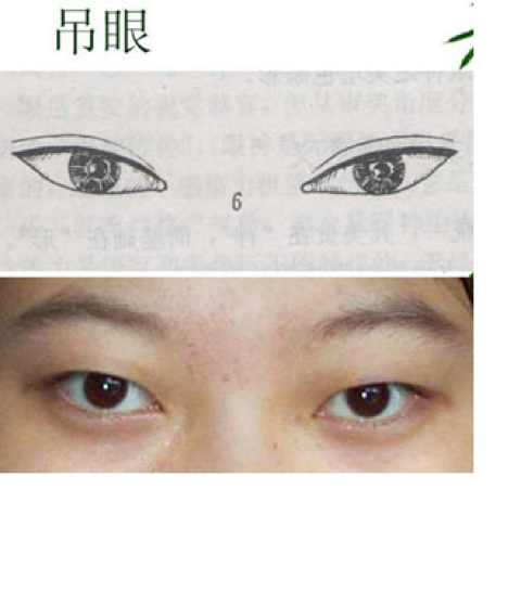 vector transparent Japanese Eyes Drawing at GetDrawings