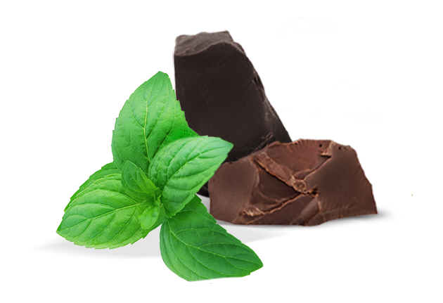 vector transparent Chocolate transparent mint. Pepermint png images free