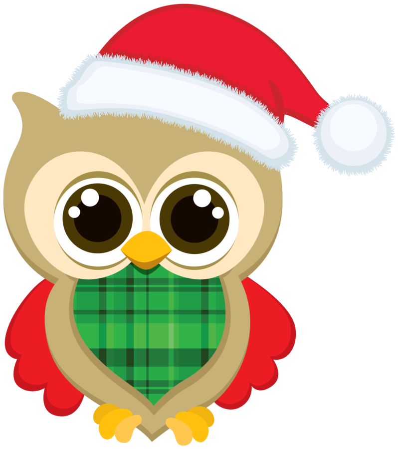 png free library CHRISTMAS OWL CLIP ART