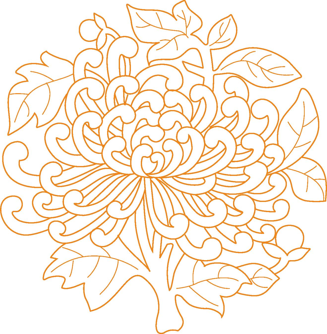 graphic library Floral design Chrysanthemum