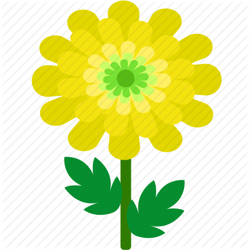 png library download Flowers