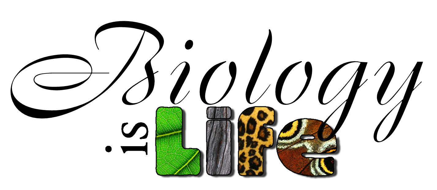 banner stock Clipart biology. Cover page png transparent.