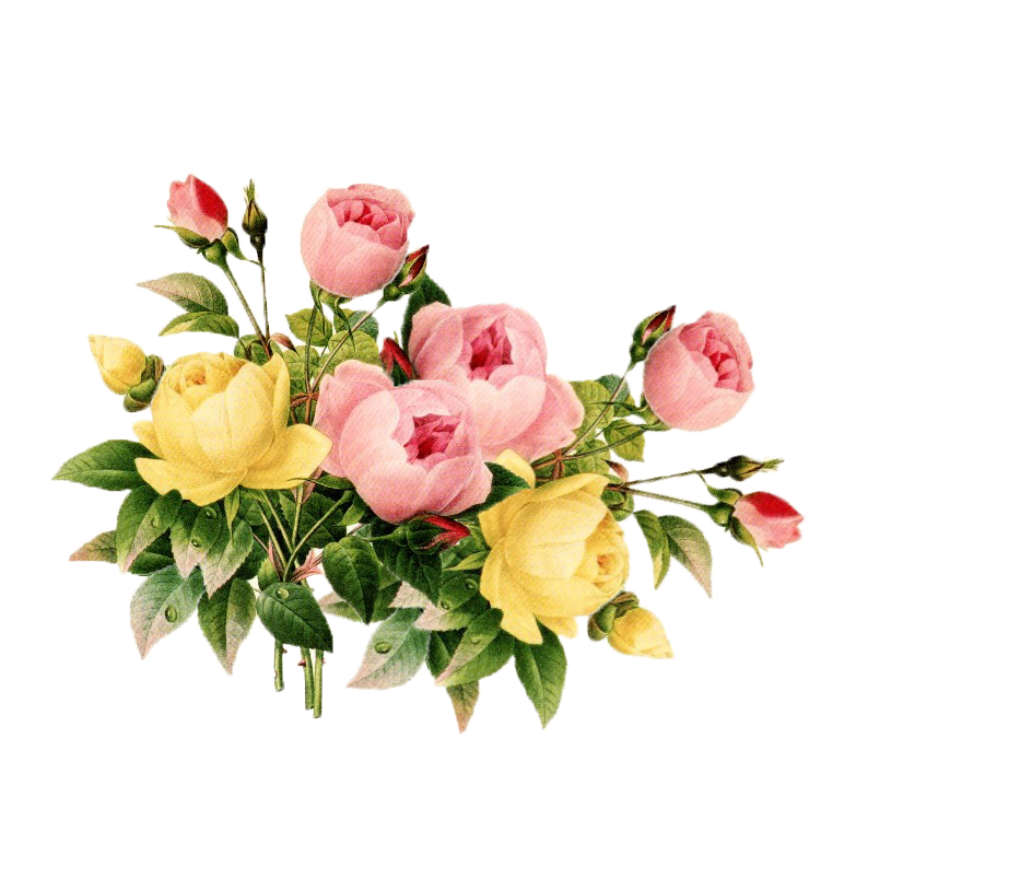 image library library Vintage flower png best. Classic clipart floral.