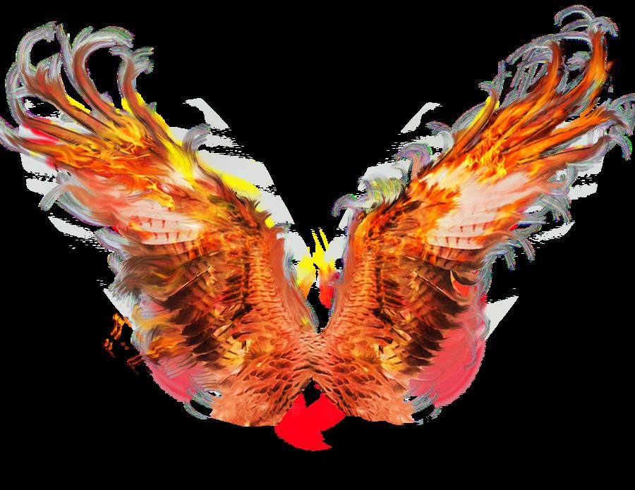 clip art library Phoenix Wings Drawing at GetDrawings