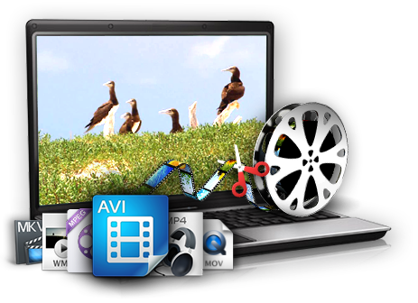 picture free library Clip mp4 cut. Gihosoft free video cutter