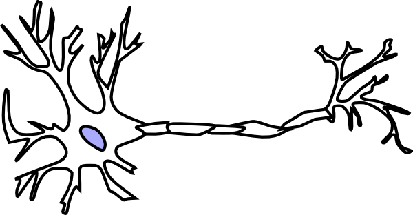 clip black and white Neuron free collection download. Clipart biology.