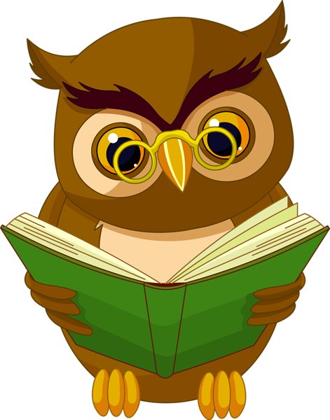 svg download Transparent Owl with Book PNG Clipart Picture