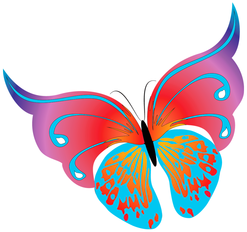 clip art library library Painted transparent butterfly png. Butterflies clipart border