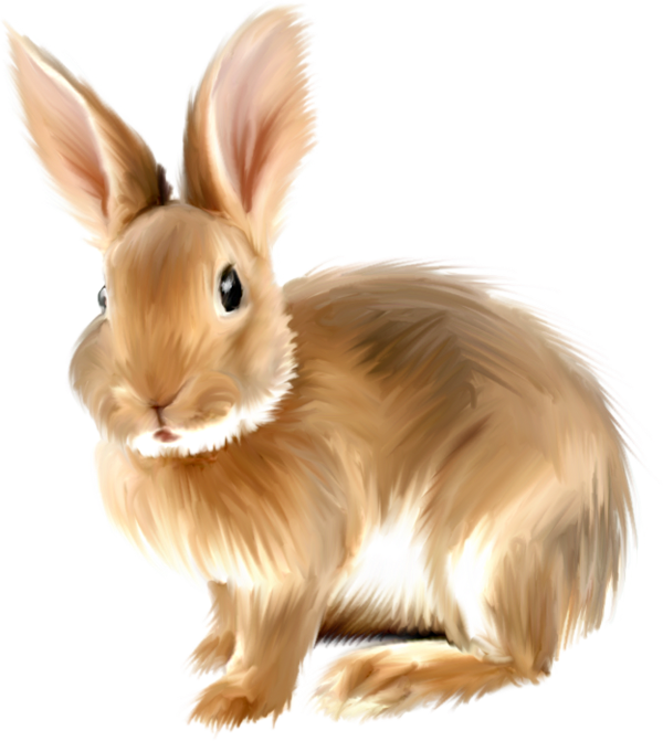 graphic royalty free stock Realistic clipart. Painted bunny png gallery.
