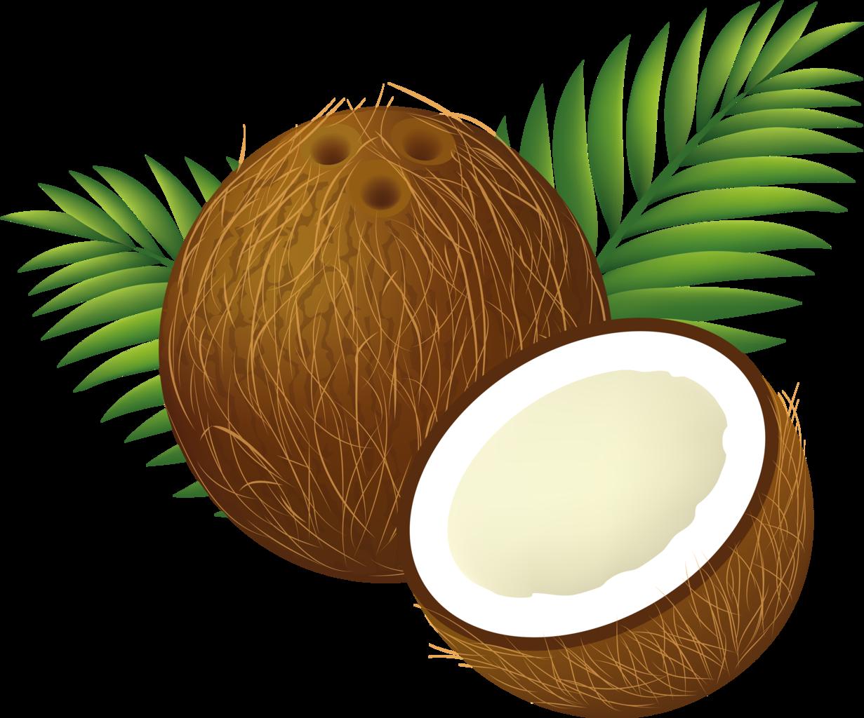 clipart freeuse stock transparent coconut file #105440742