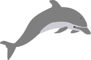image black and white library Dolphin Outline Grey Clip Art at Clker