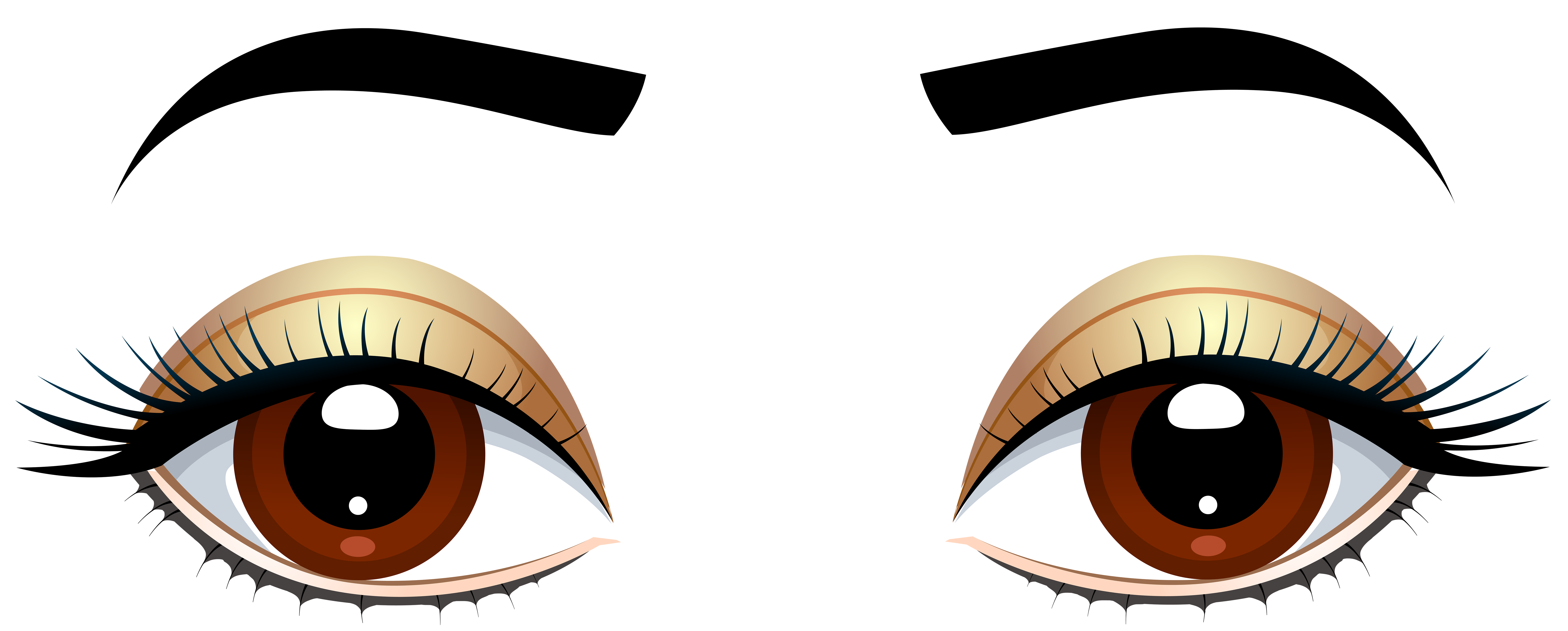vector library stock Brown eyes with png. Vector eyebrows