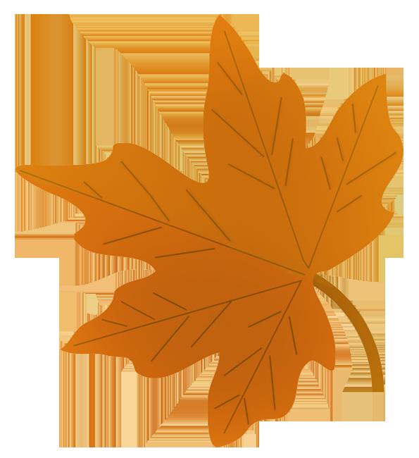 graphic transparent download Fall leaves clip art. Maple clipart acorn leaf