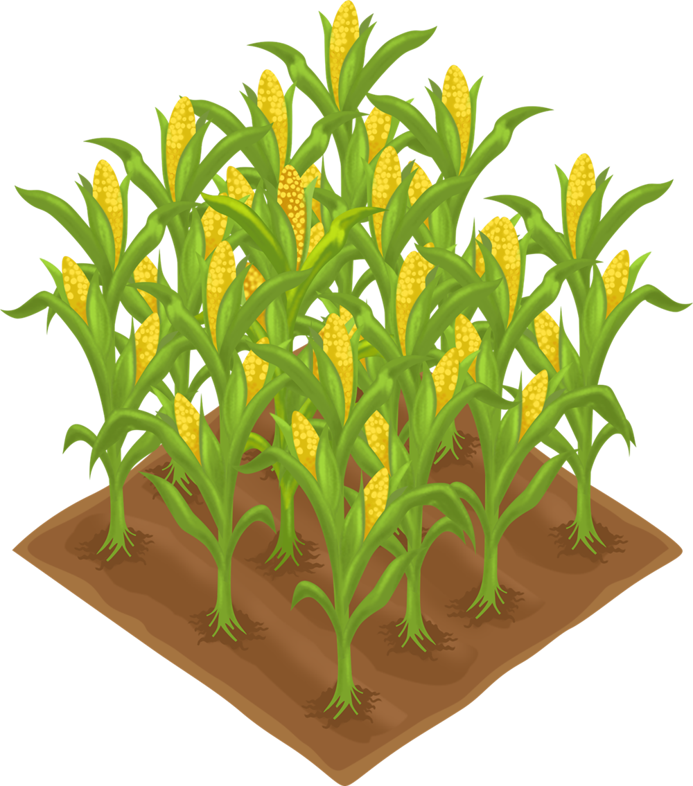 graphic free Crop agriculture farm field. Crops clipart