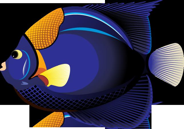 svg free Tropical fish clip art